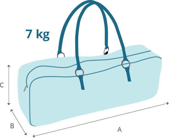 520c085905c7 Baggage Information
